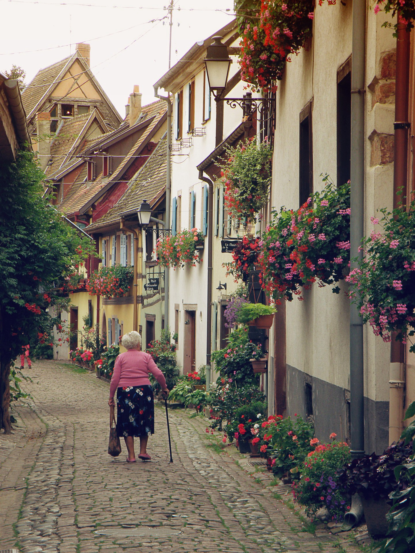 An elderly woman walking along a cobblestone street lined with houses showing off numerous flower boxes