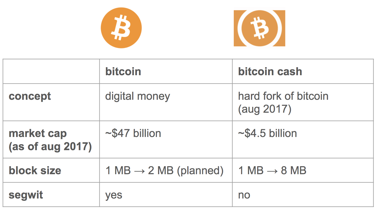 A Beginner S Guide To Bitcoin Cash