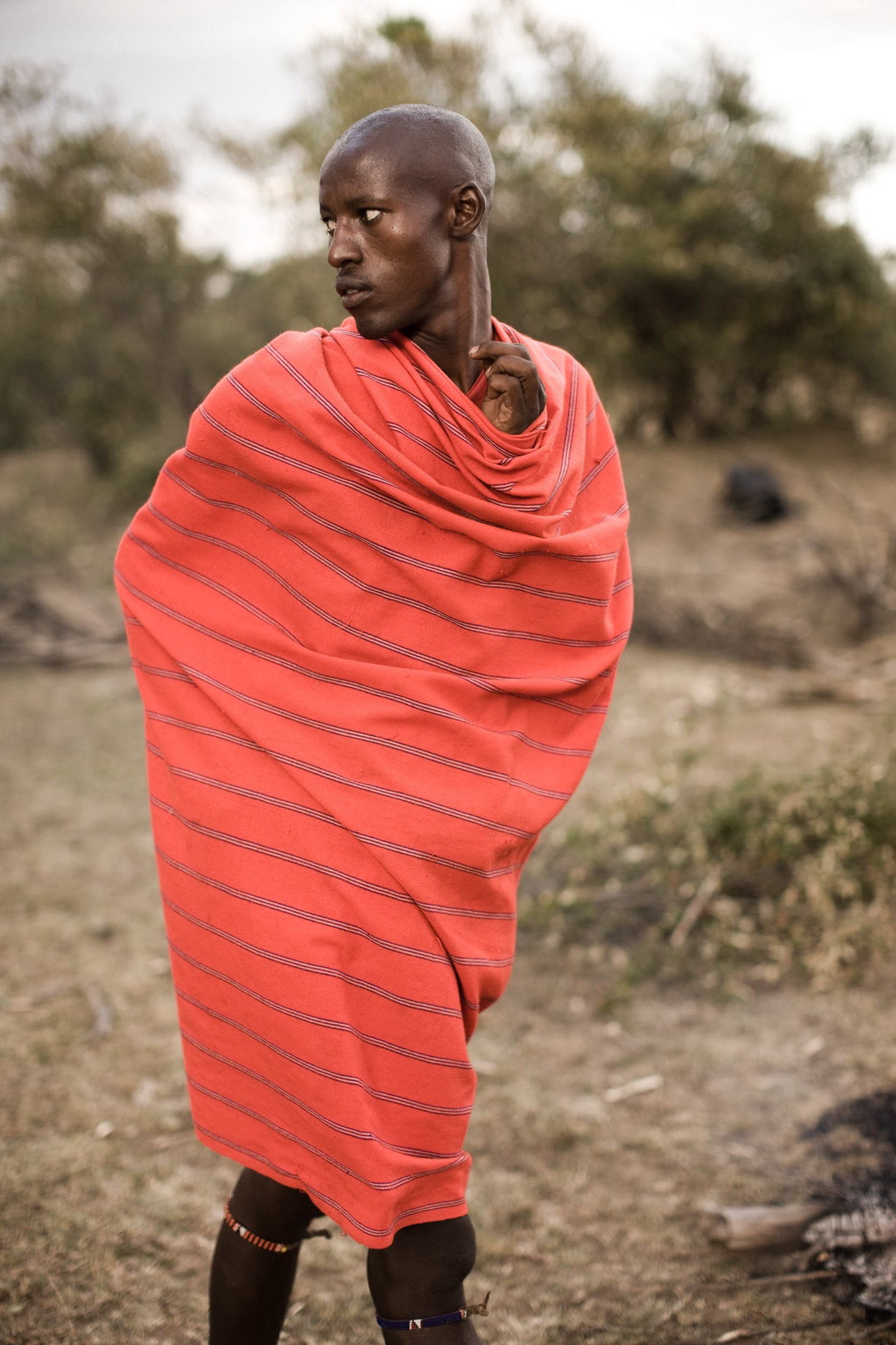 Maasai trade livestock for the purchase of grains, beads, and clothing. Cows and goats are also sold for uniforms and school fees; those sent away from the manyatta to seek higher education often feel like outcasts