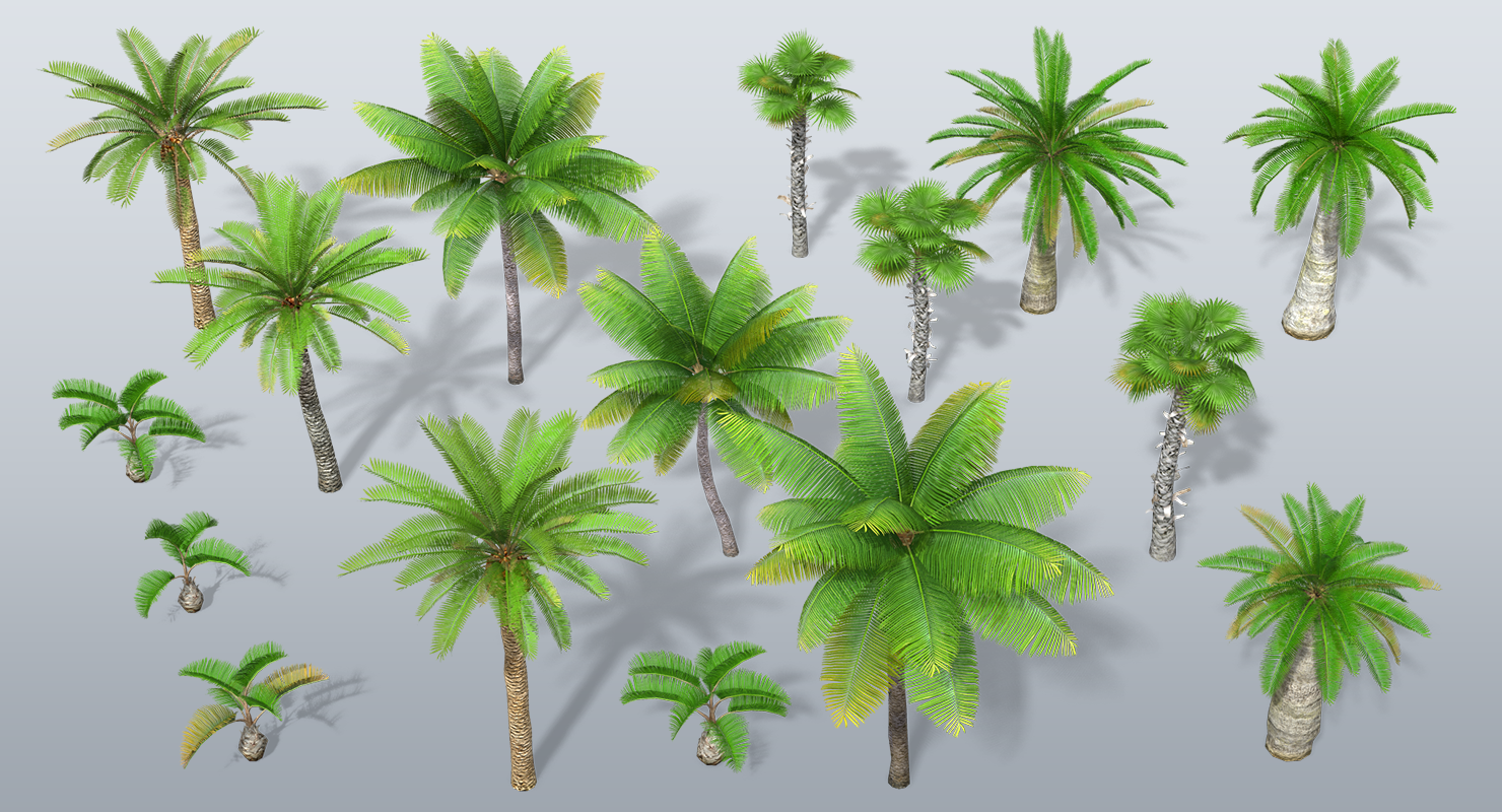 3D Asset Pack: Low Poly Palm Trees Pack - AAA Animators - Medium