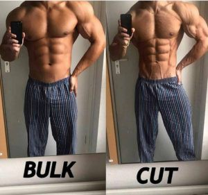 fat loss pills bodybuilding