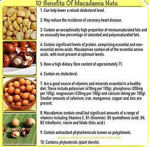 The Downside Risk Of Macadamia Nuts Health Benefits That No One Is Talking About By Robin Martino Medium