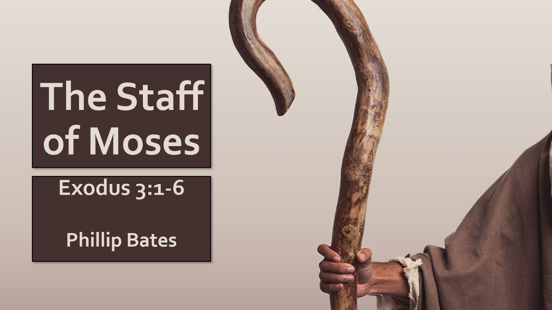 Staff of Moses | Sunset Church of Christ in Springfield MO