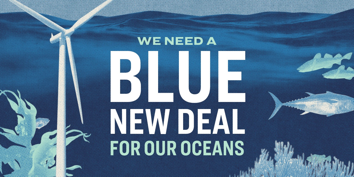 "Elizabeth Warren Releases ""Blue New Deal"""