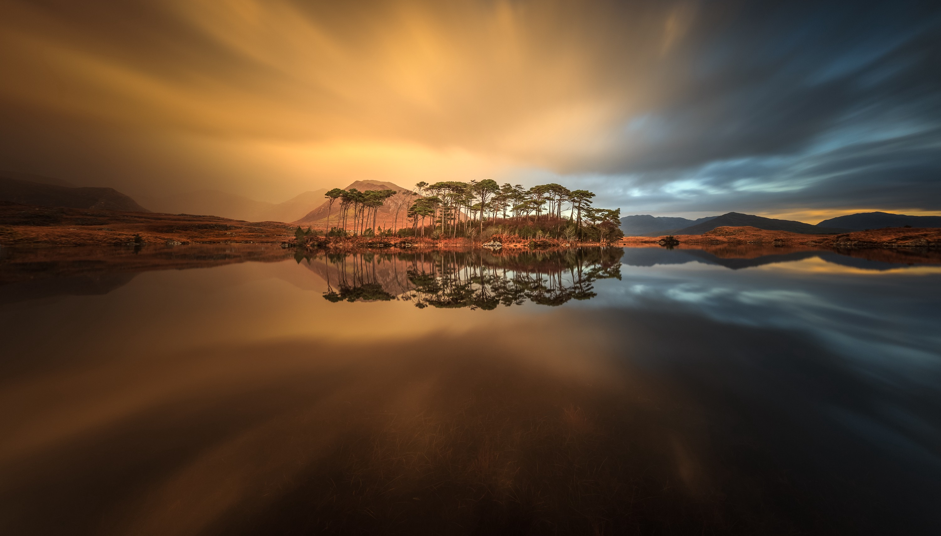 A serene island with tall, sparse trees is shot from eye level, with a still, mirror like body of water surrounding it