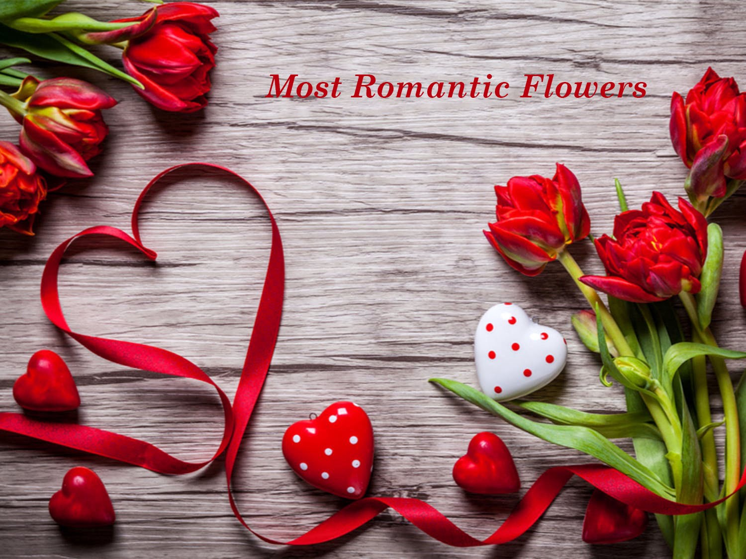 Image result for Flowers: The Most Special And Appealing Gift For Your Loved Ones
