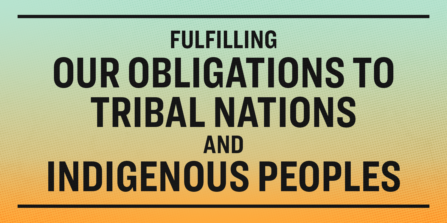 Image result for united nations rights of indigenous culture