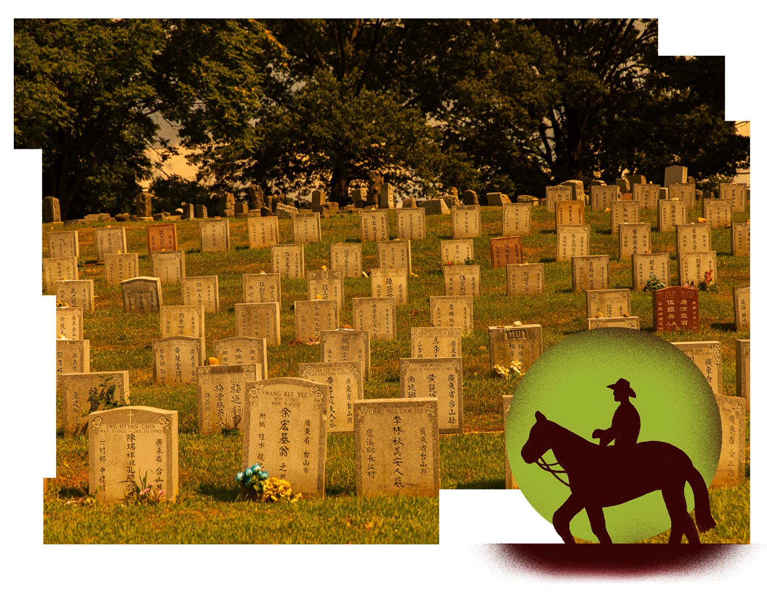 How Ancestry Com S Find A Grave Encourages Bad Actors And Bad Data By Katie Reid Onezero