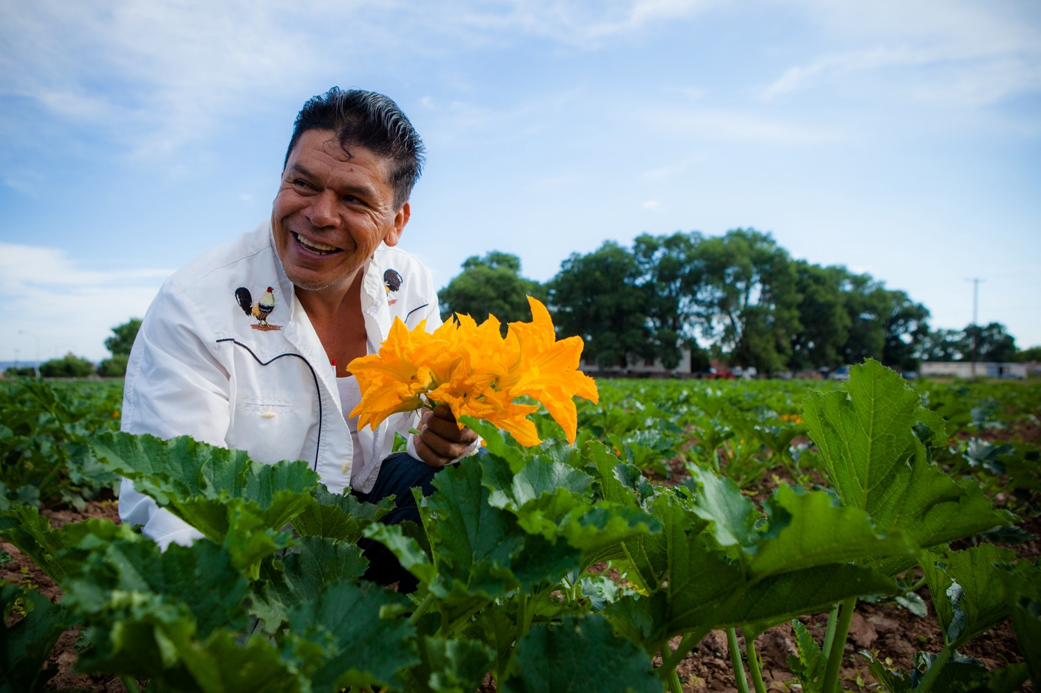 A farmer holds squash blossoms while standing amongst their crops