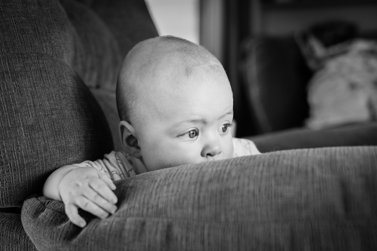 black and white. baby boy leaning over the edge of an arm chair, looking off into the distance.