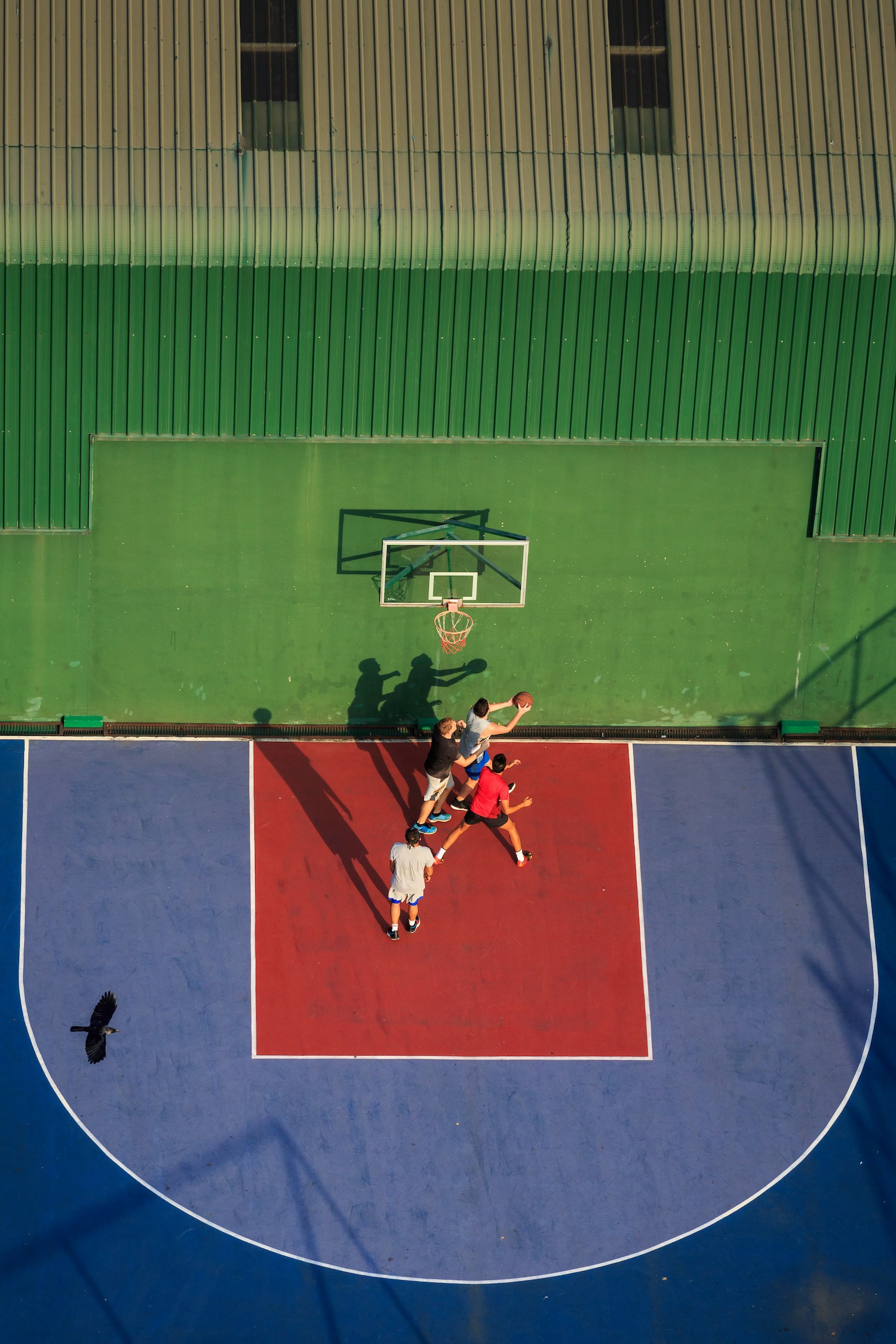 Overhead view of four people playing basketball as a black crow flies in the lower left-hand corner of the photo.