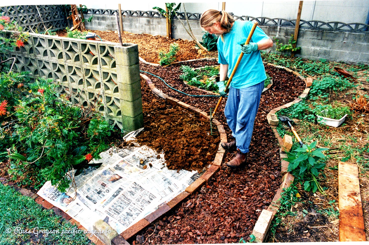 Designing a small urban garden - PERMACULTURE 3.0 - Medium on Backyard Permaculture Design id=93330