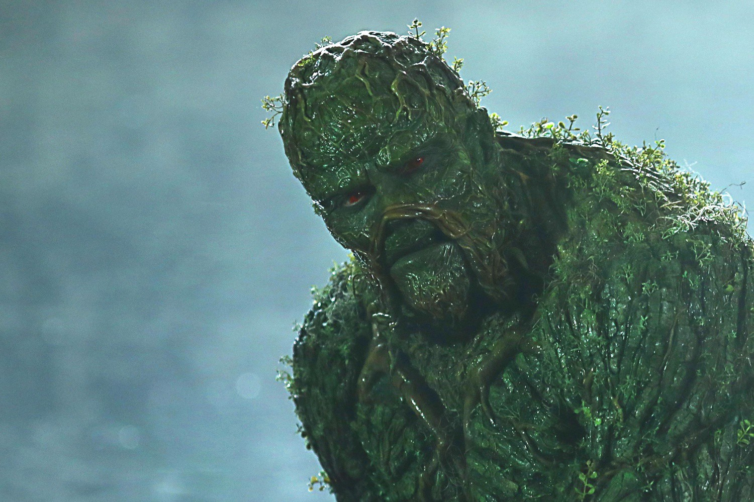 Image result for SWAMP THING TNT