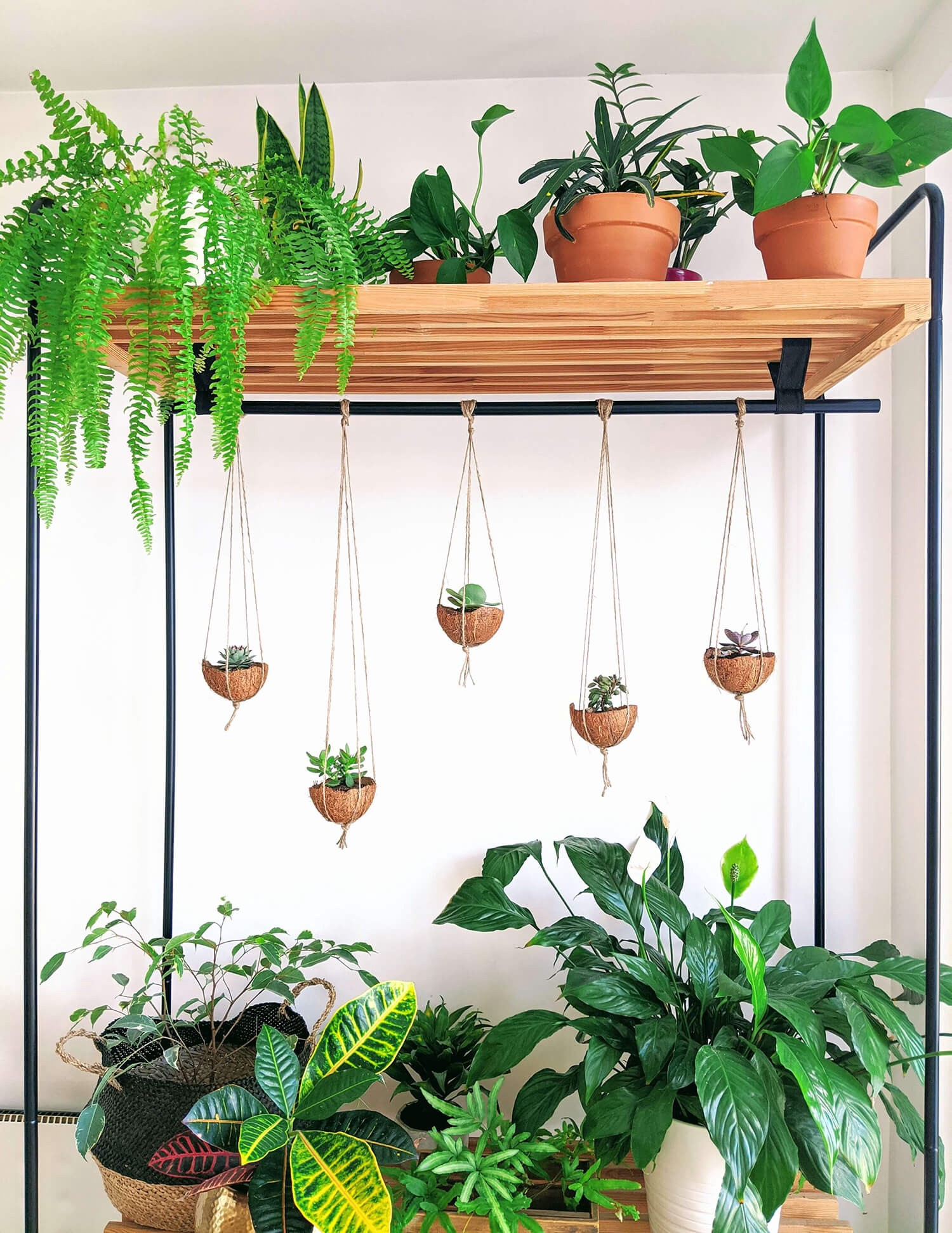 standing wooden shelf with indoor plants and hanging coconut planters