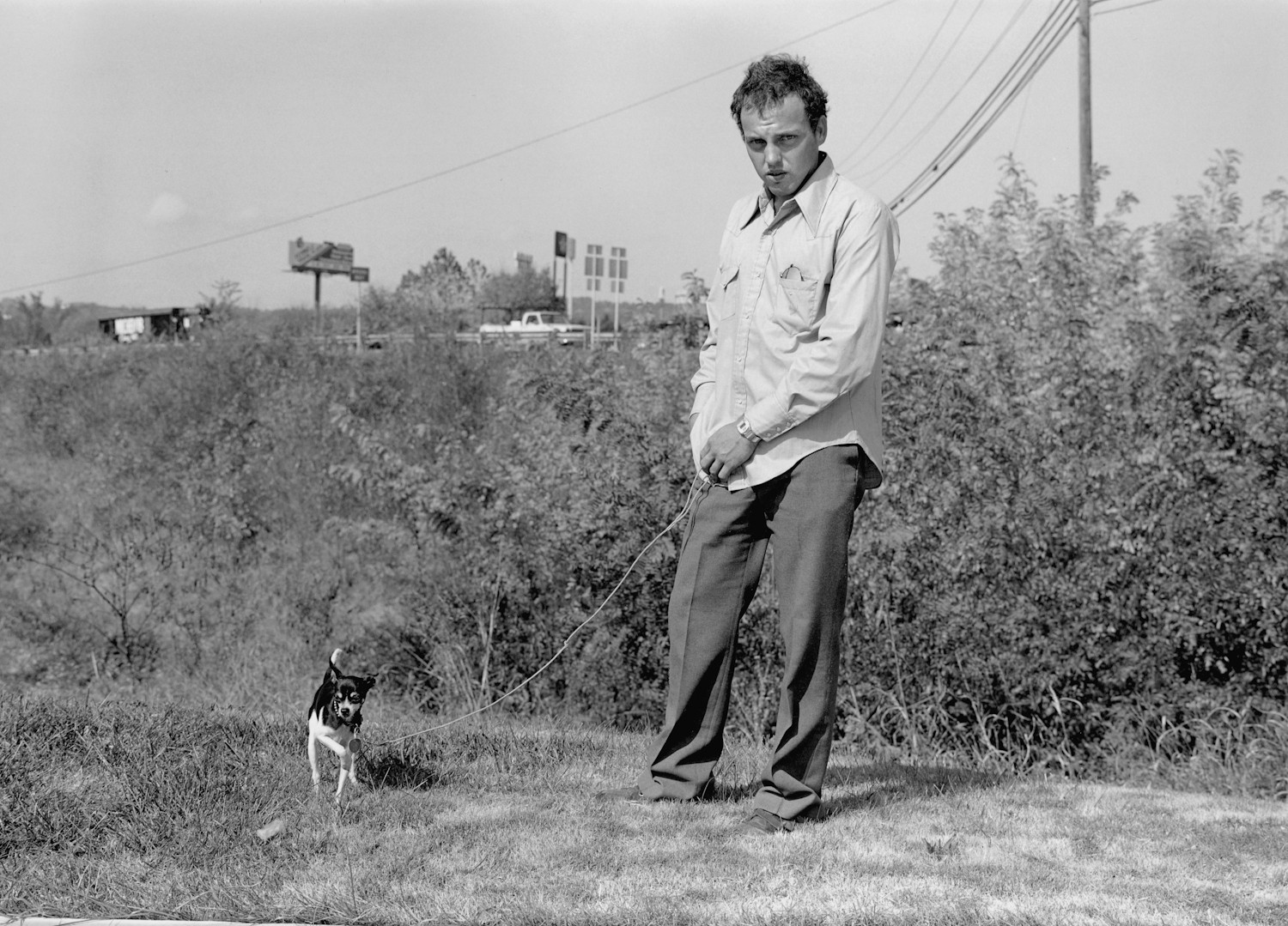 Image result for mark steinmetz photography