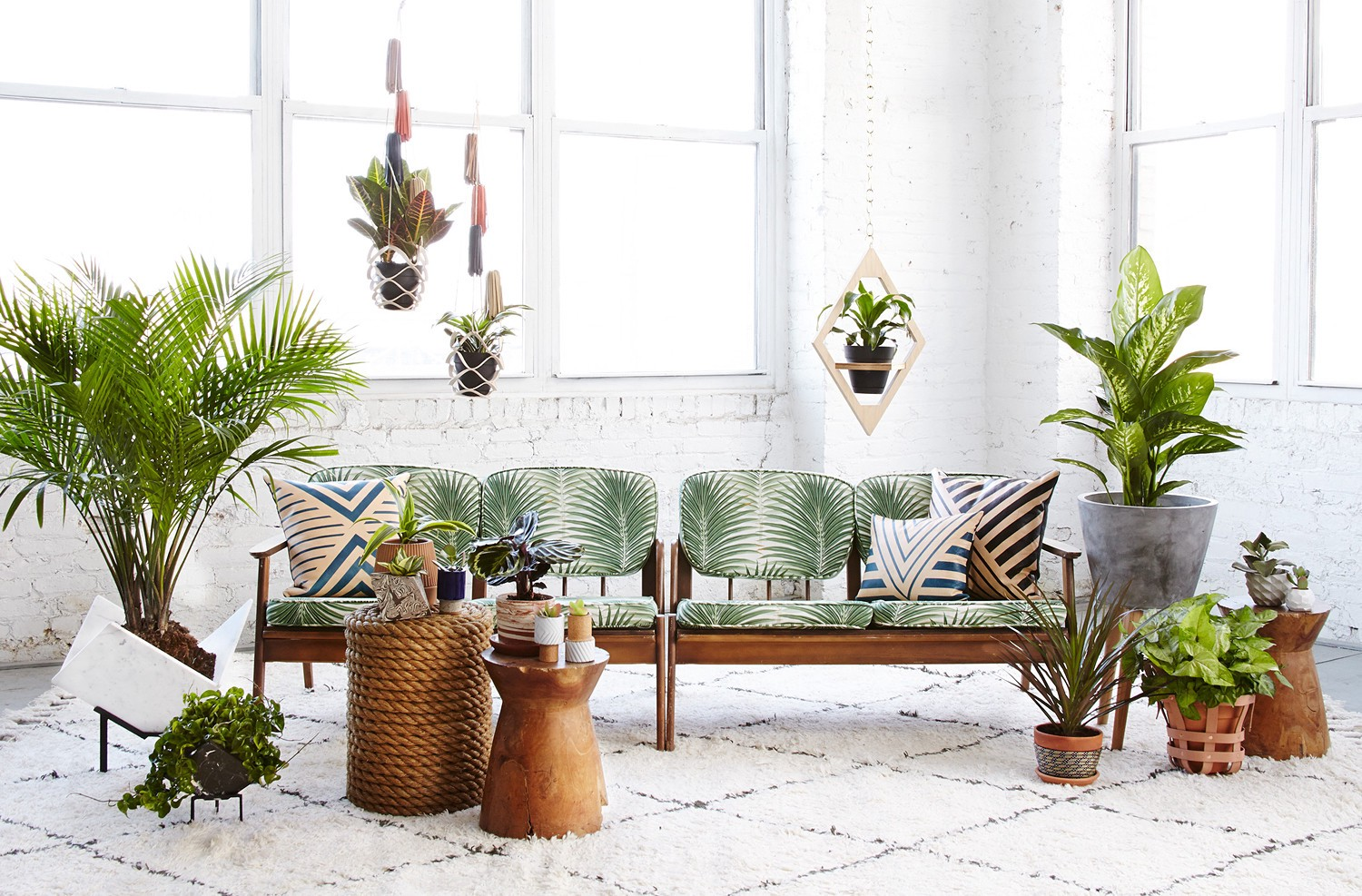 How To Use Plants In The Interior By Anna Samygina Basics Of Interior Design Medium