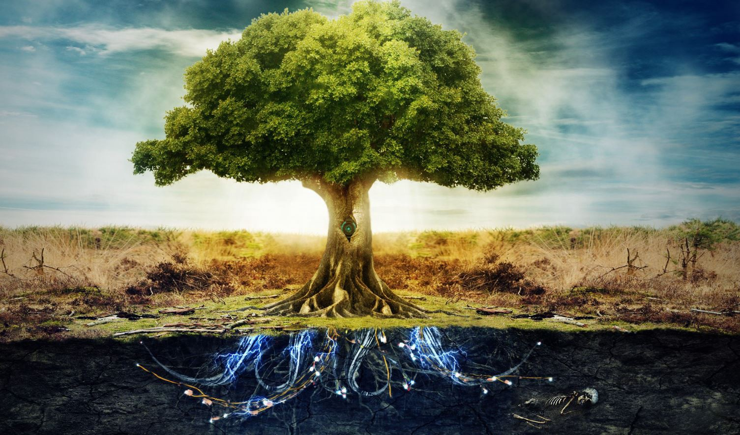 The Garden Of Eden On The Philosophy Of Good And Evil