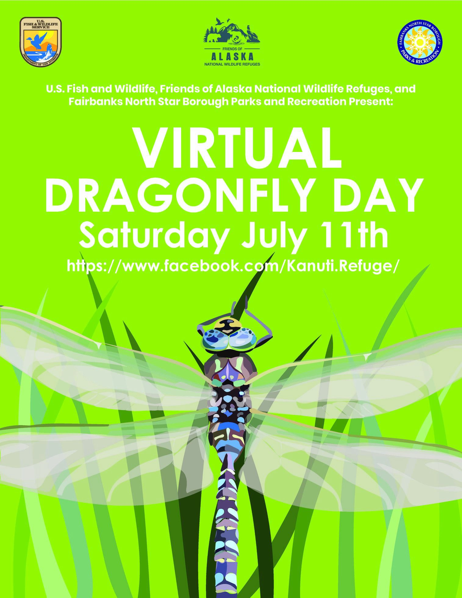 Poster of dragonfly on grass. Text: Virtual Dragonfly Day Saturday July 11th.