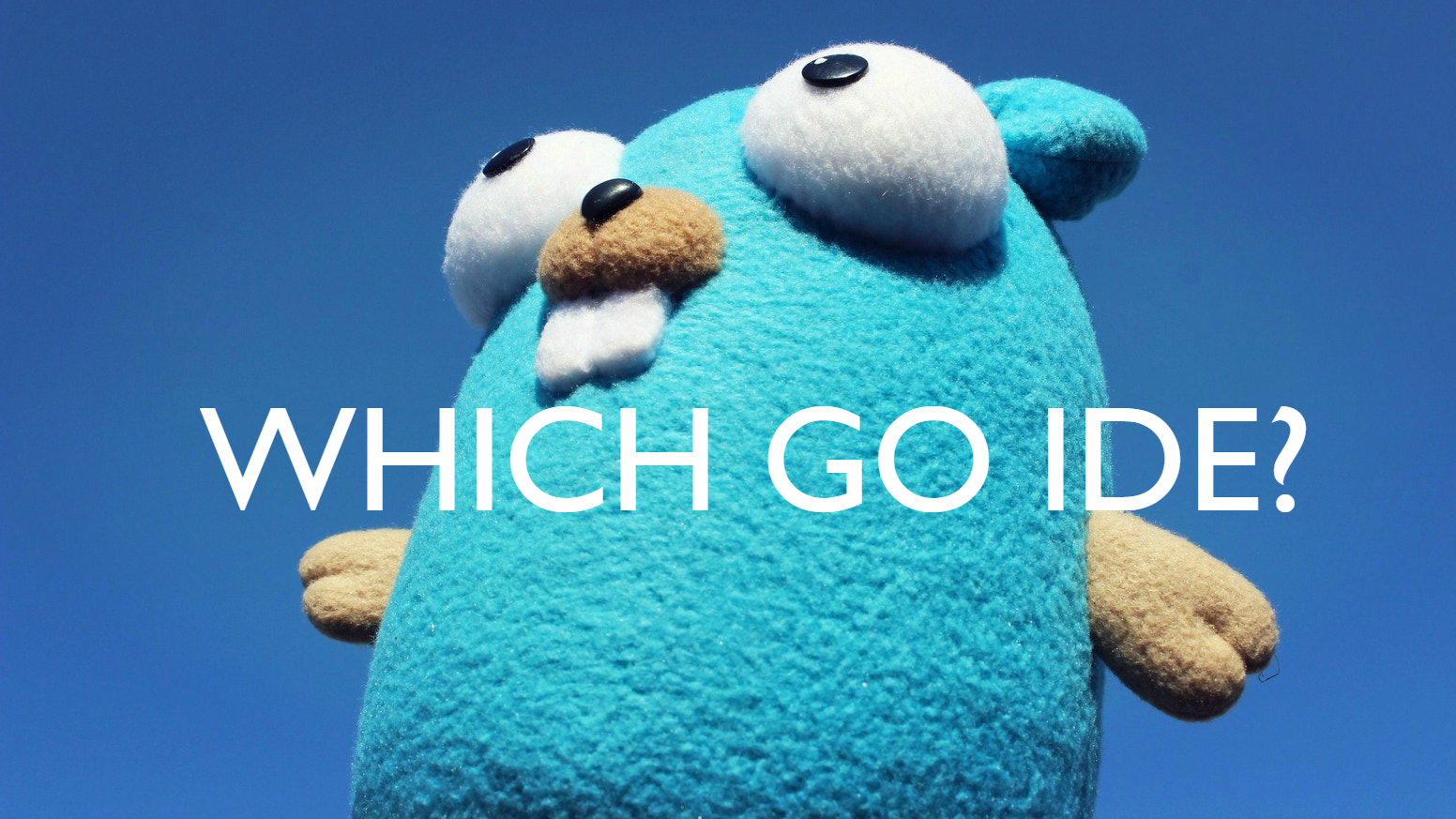 What is the best IDE for developing in Golang? - cloud