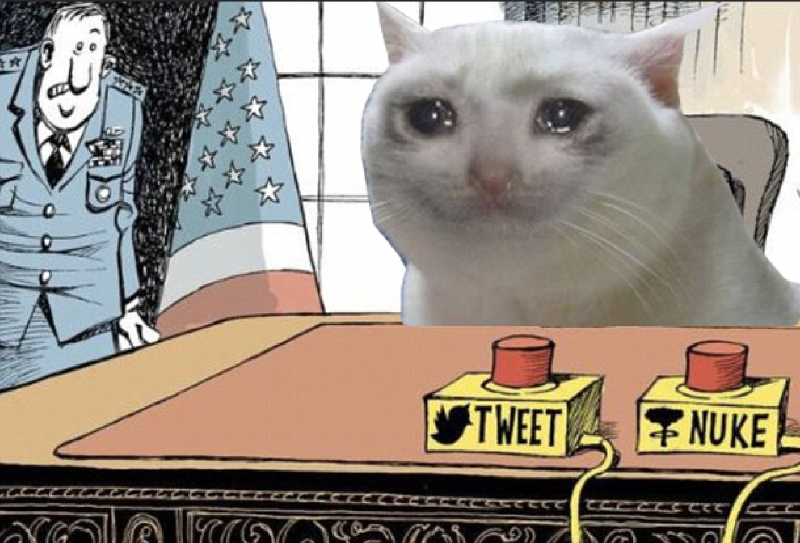 Crying cat tries to chose between button to launch nuclear warheads and button to tweet