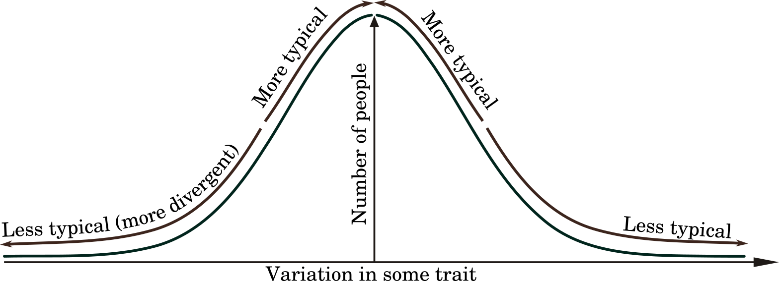 Many traits follow a 'bell curve' or 'normal distribution', with most people clustered around a central point.