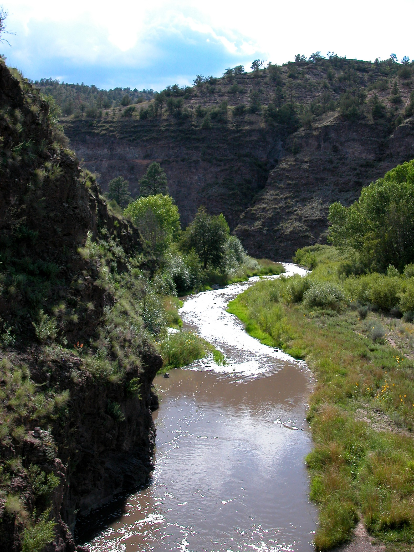 Middle fork of the Gila River NM