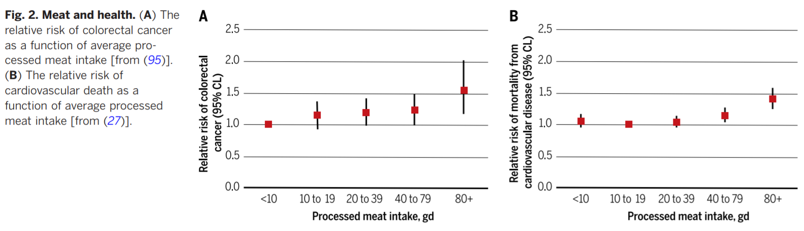 Processed Meat Consumption And Chd Diabetes And Colorectal Cancer By Ecyy Medium