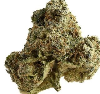 Marijuana — Order Weed Online. Working daily for over a long period of… |  by Marijuana | Medium
