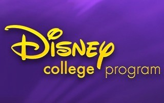 Image result for disney college program
