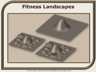 The Economy as Fitness Landscape
