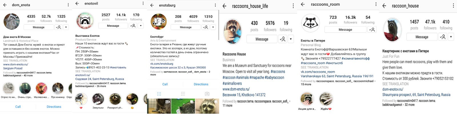 The Deeply Unsettling World of Russian Raccoon Instagram