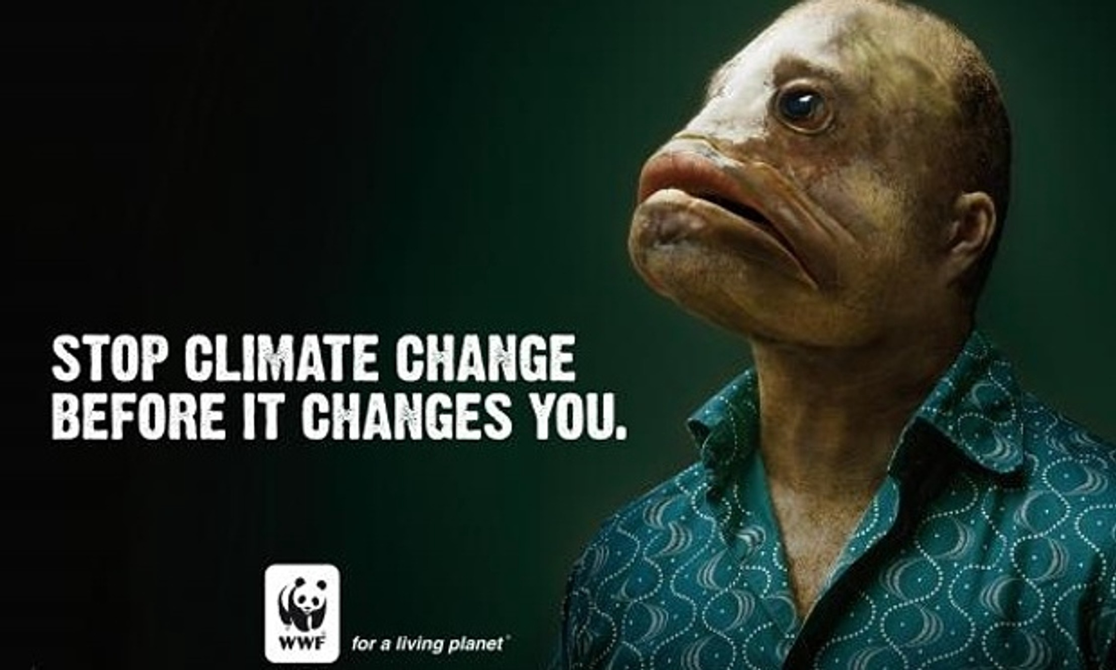7 Astonishing Print Ads By Wwf Look Be Astonished Learn Print By Esther Brhlik Better Marketing Medium