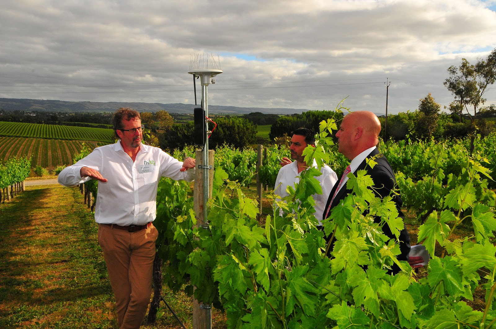 Three men in a vineyard with the Arable Mark 2