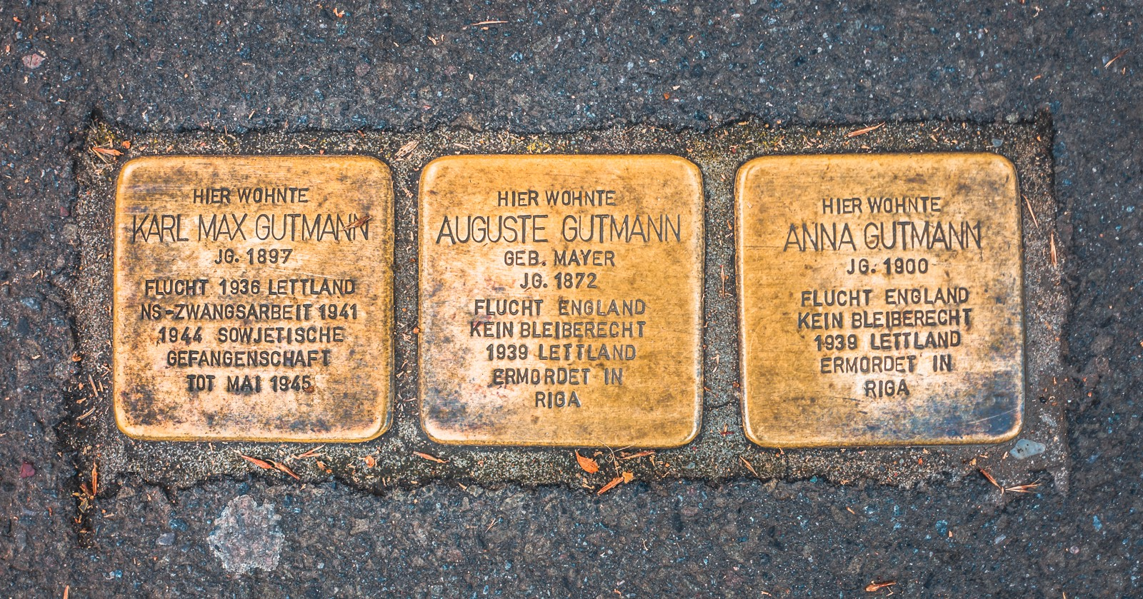 "Three brass ""Stolpersteine"" — stumbling stones — listing the last voluntary residences of three German Jews"