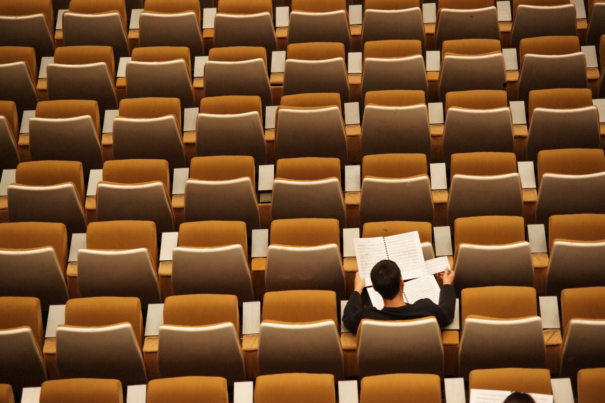 """Student studying in a lecture hall—Photo by <a href=""""https://unsplash.com/@flipboo?utm_source=unsplash&utm_medium=referral&utm_content=creditCopyText"""">Philippe Bout</a> on <a href=""""/s/photos/study?utm_source=unsplash&utm_medium=referral&utm_content=creditCopyText"""">Unsplash</a>"""