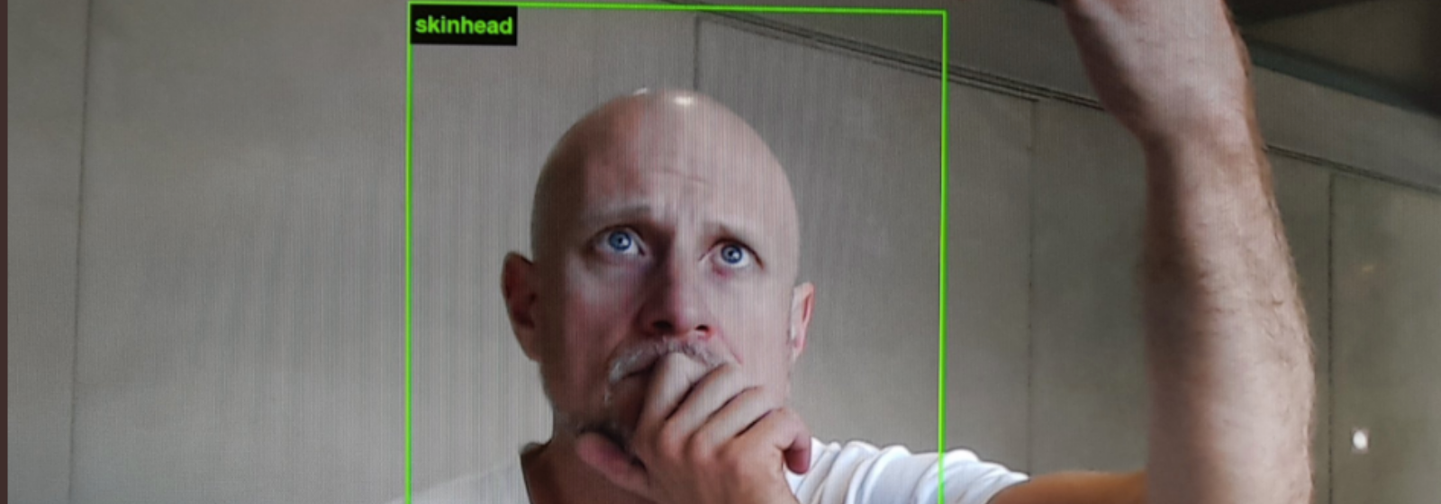 "Trevor Paglen, a bald white man, looking concerned in a webcam, with a green box around his face labeled ""skinhead""."