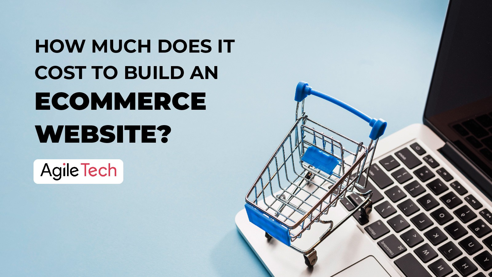 ecommerce website cost and successful online store for business by agiletech software development company