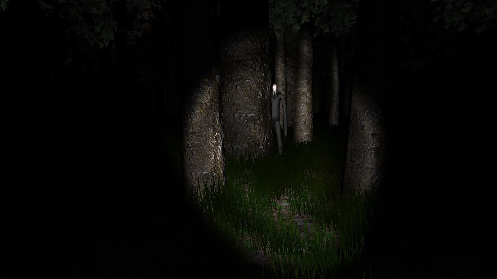 A screenshot of the game Slender: The Eight Pages, showing very simple graphics.
