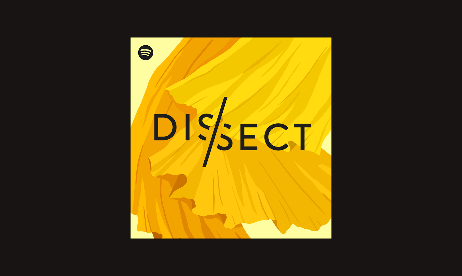 Designing A Spotify Studios Podcast With Dissect By Spotify Design Spotify Design Medium