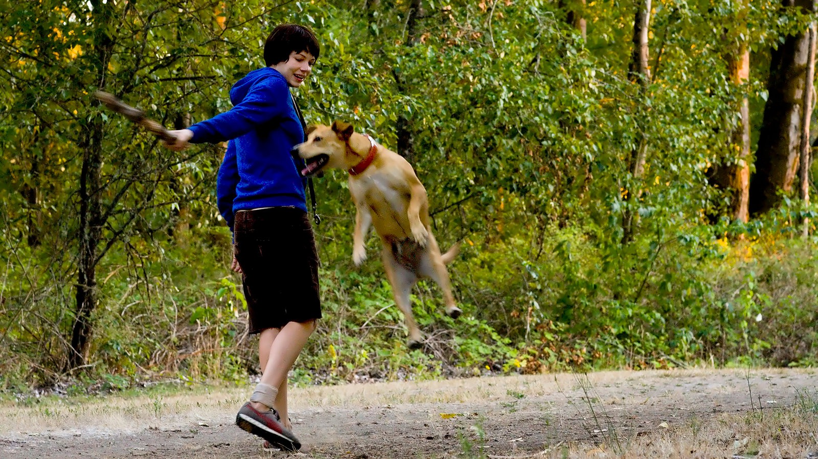 A woman plays fetch with her dog.