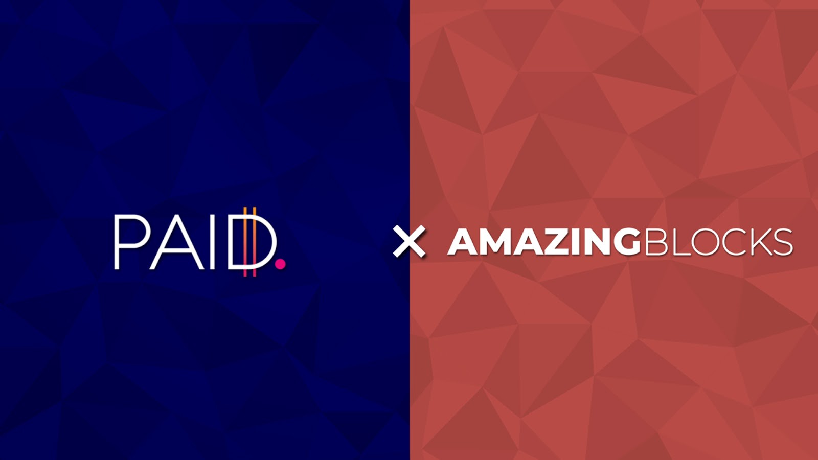 Paid Network Partners with Amazing Blocks
