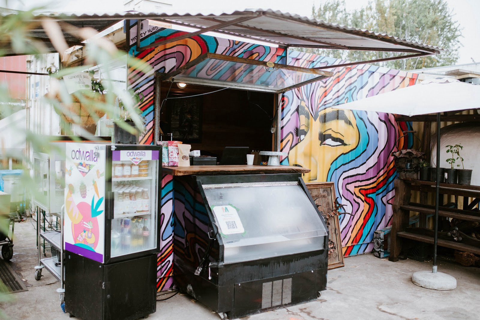 An outdoor food stand with a mural of a long-haired person on its metal walls and two refrigerated cases.
