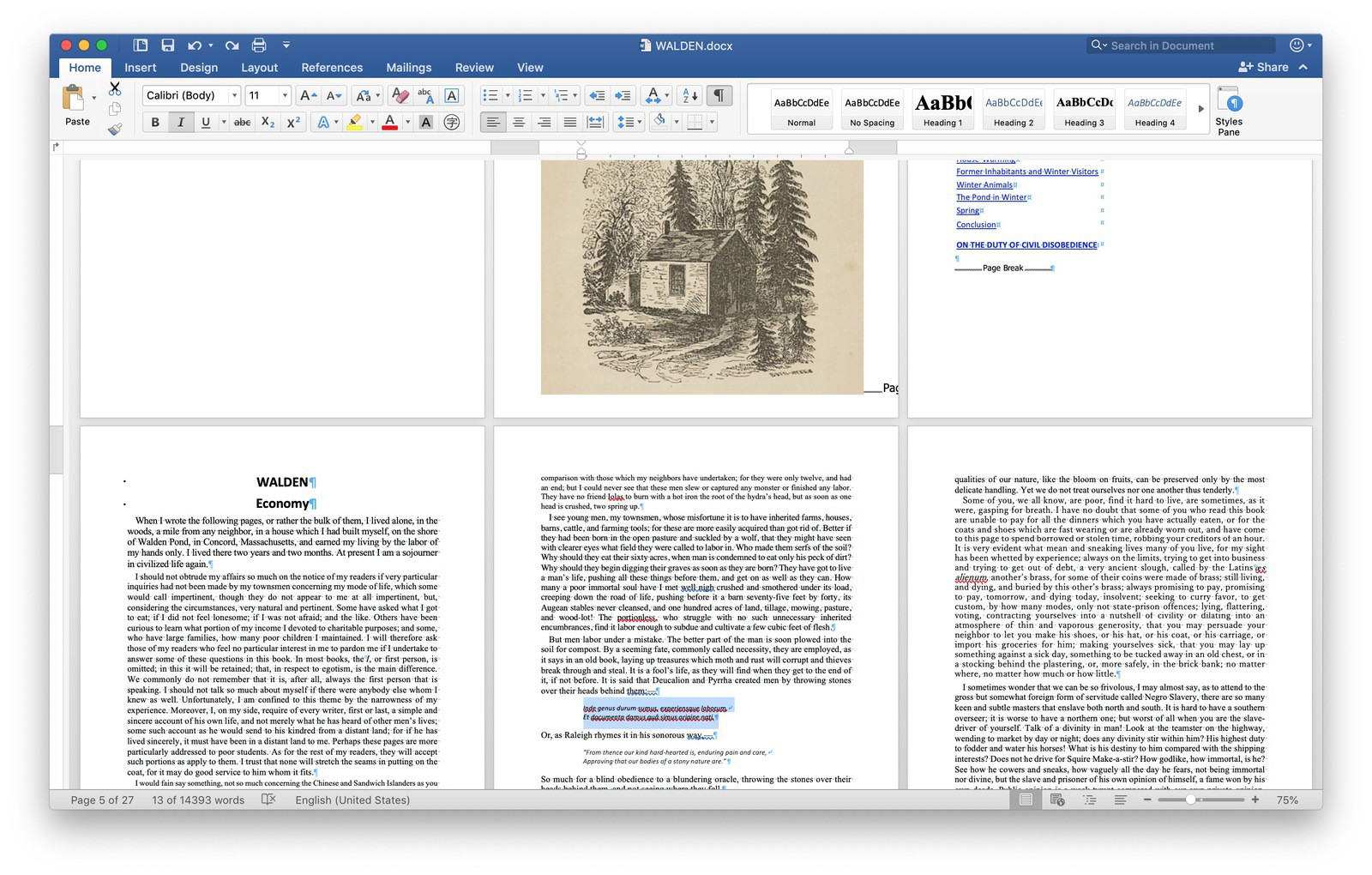 """A screen shot of Microsoft Word showing the book """"Walden"""" whose text styling shows multiple defects in font size, weight, etc"""
