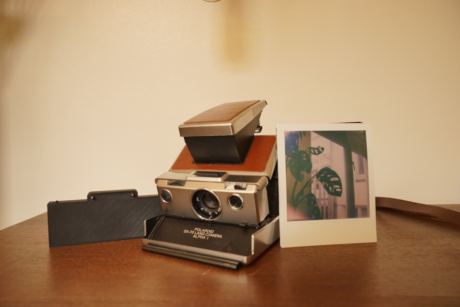 Remora-01, MiNT SLR 670 and first shot I took with this combo