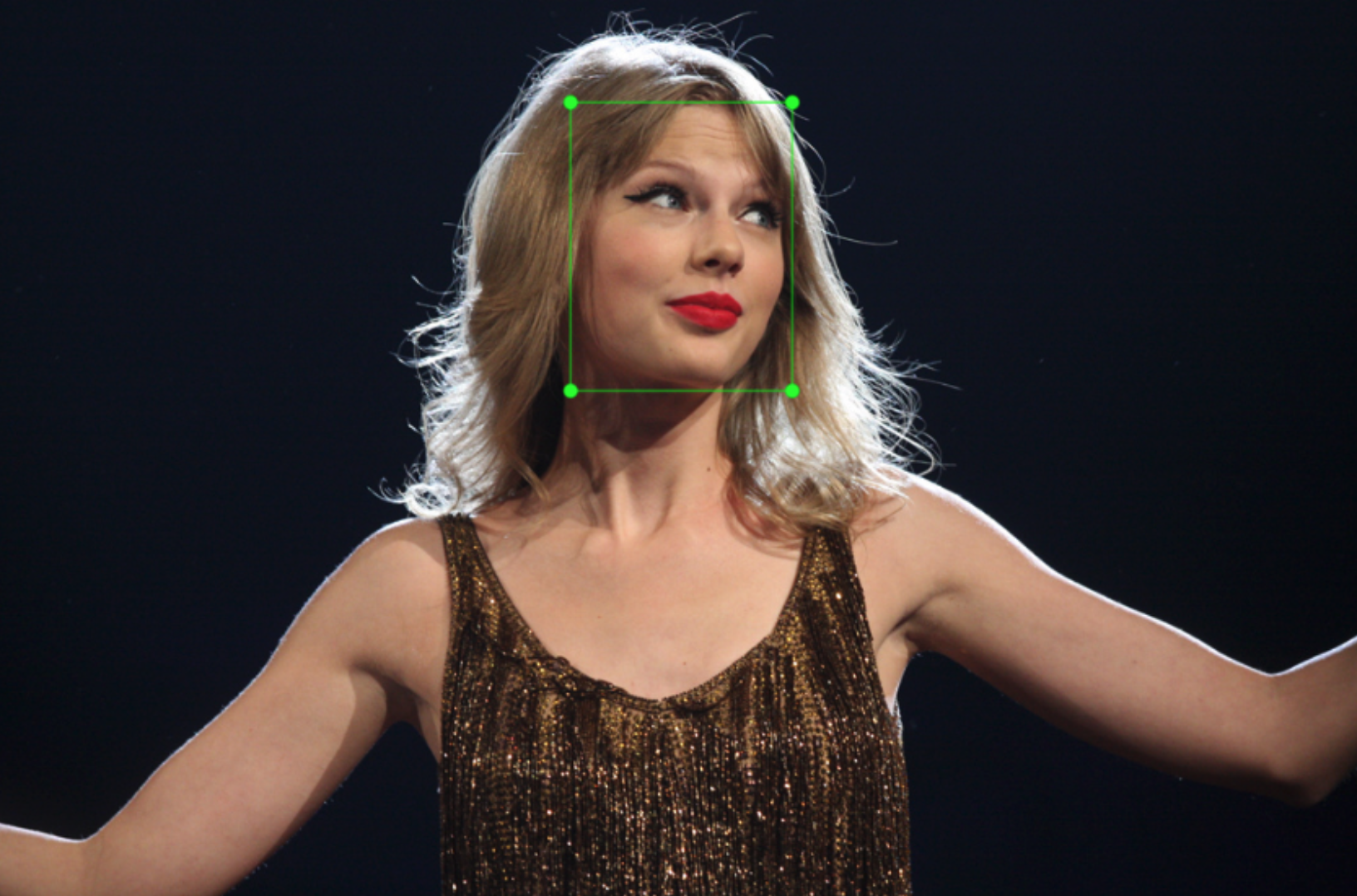 Build a Taylor Swift detector with the TensorFlow Object