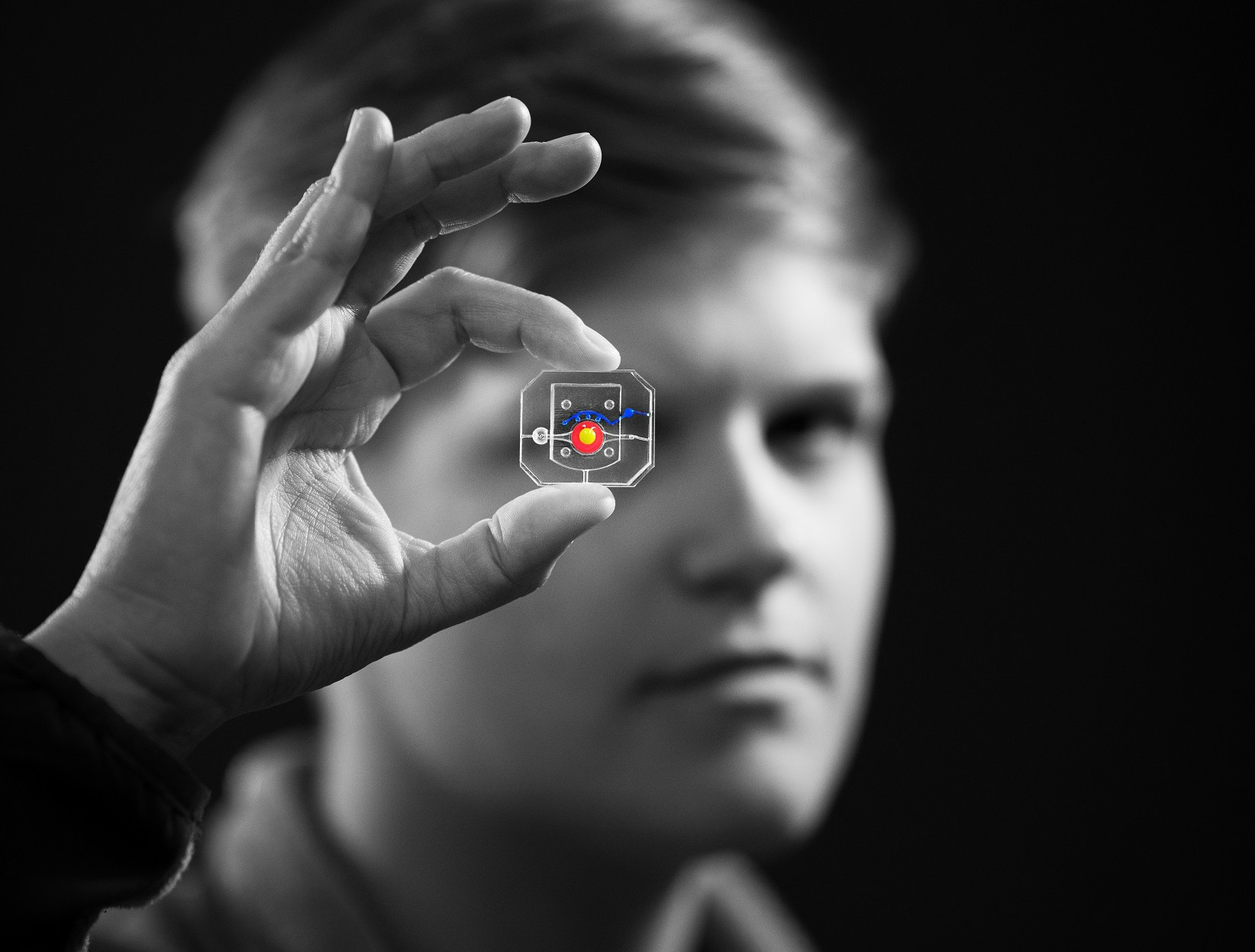 A black-and-white photo of a Huh lab member holding up an eye-on-a-chip device. Its components are their true colors.