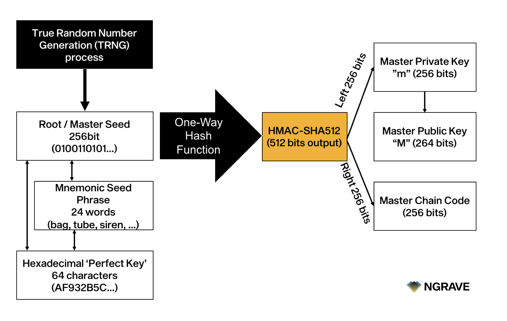 The NGRAVE Perfect Key is the hexadecimal equivalent of its relevant binary or mnemonic word version of the master seed.