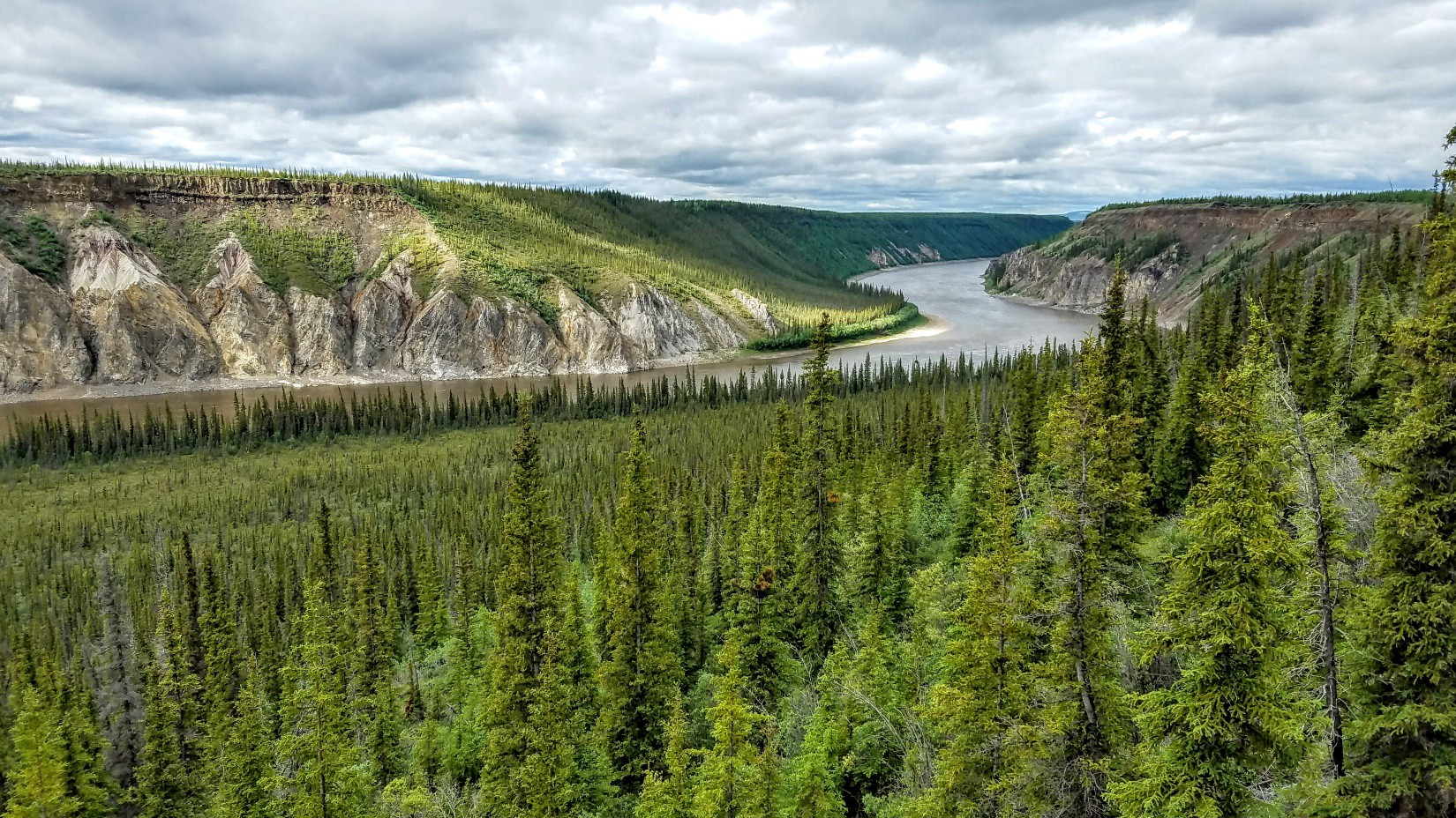 a boreal forest cut by the porcupine river in Arctic Refuge