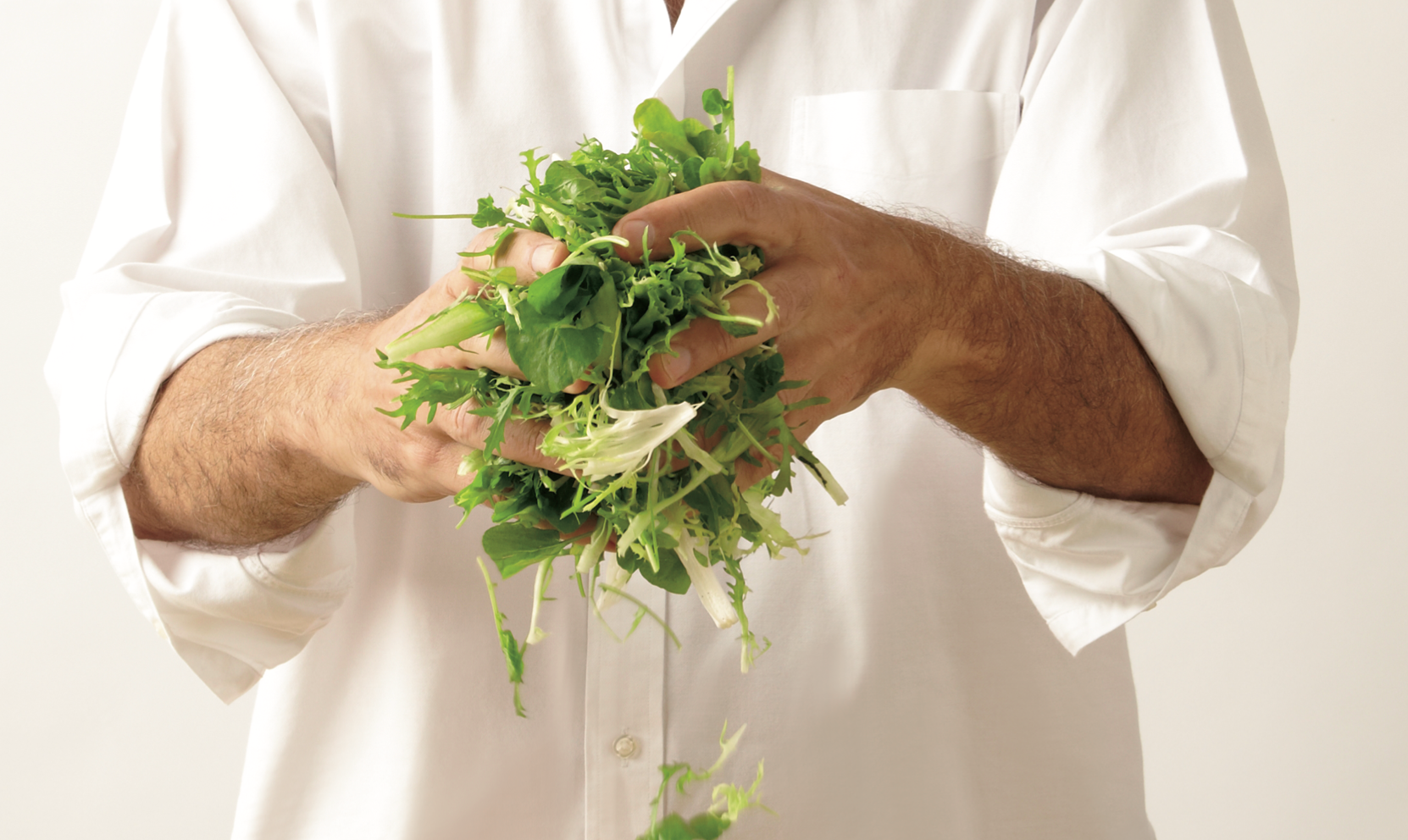 Closeup of the bare hands of a person in a white chef's coat holding salad greens.