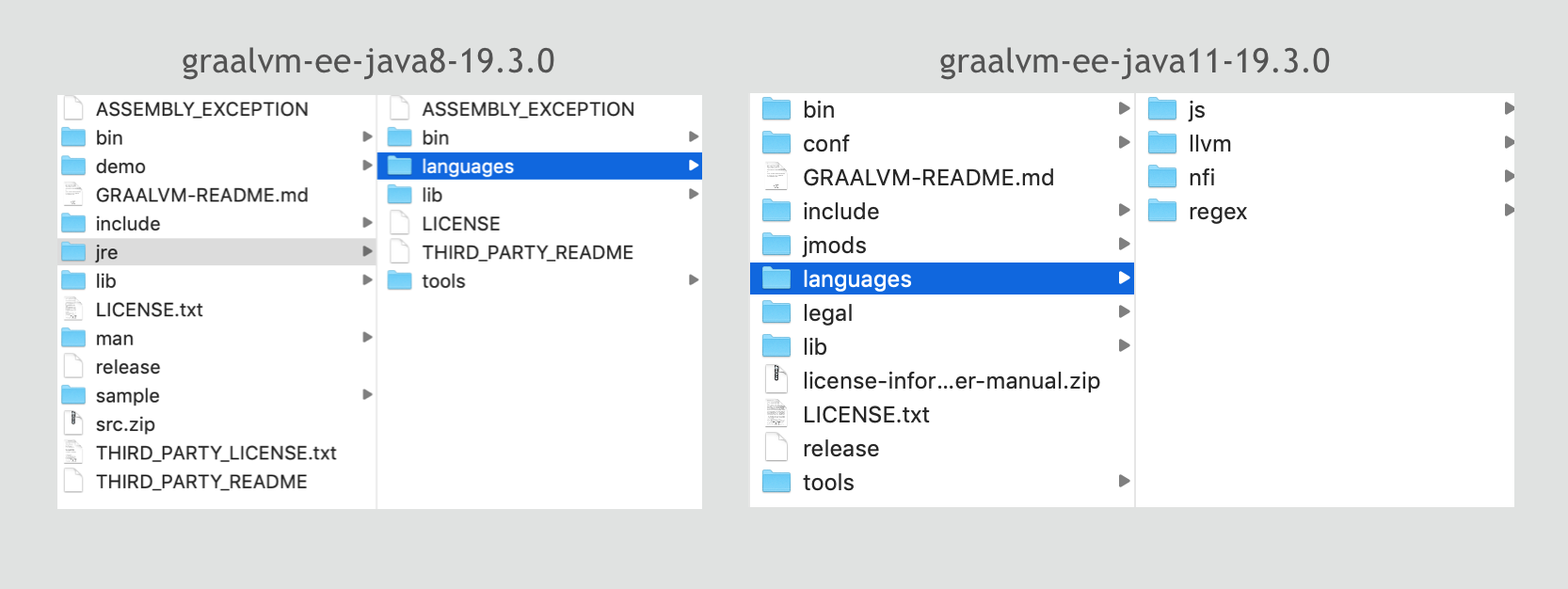 Difference in the location of the languages in JDK 8 and JDK 11 based GraalVM 19.3
